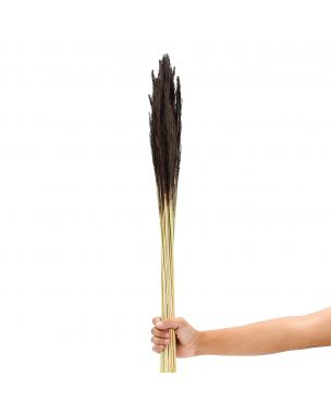 Leewadee Dried coloured palm leaf bunch for floor vases decorative grass twig bunch, 40 inches, Dried Natural-Grass, brown