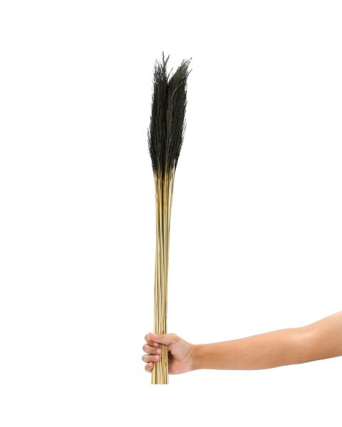 Leewadee Dried coloured palm leaf bunch for floor vases decorative grass twig bunch, 120 cm, Dried Natural-Grass, black
