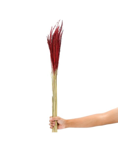 Leewadee Dried coloured palm leaf bunch for floor vases decorative grass twig bunch, 120 cm, Dried Natural-Grass, red