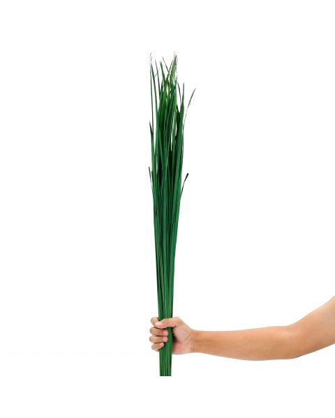 Leewadee Dried coloured palm leaf bunch for floor vases decorative grass twig bunch, 47 inches, Dried Natural-Grass, green