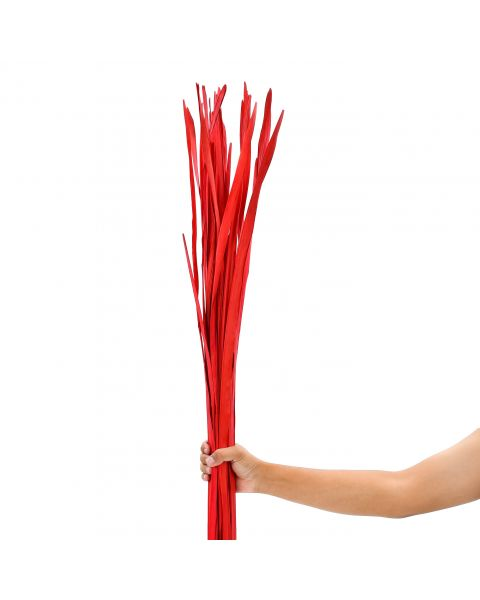 Leewadee Dried coloured palm leaf bunch for floor vases decorative grass twig bunch, 47 inches, Palm Leaf, red