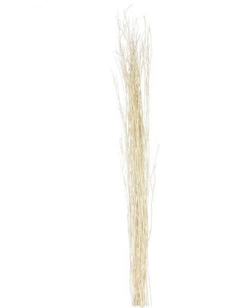 Leewadee Dried coloured palm leaf bunch for floor vases decorative grass twig bunch, 47 inches, Rattan, ecru