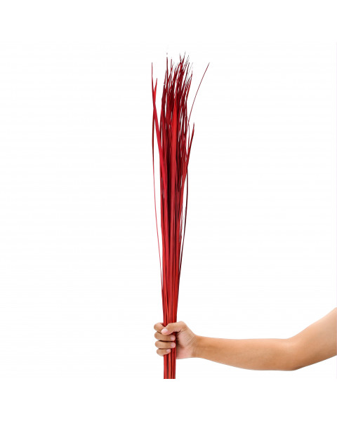 Leewadee Dried coloured palm leaf bunch for floor vases decorative grass twig bunch, 47 inches, Dried Natural-Grass, red