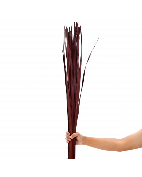 Leewadee Dried coloured palm leaf bunch for floor vases decorative grass twig bunch, 47 inches, Palm Leaf, bordeaux