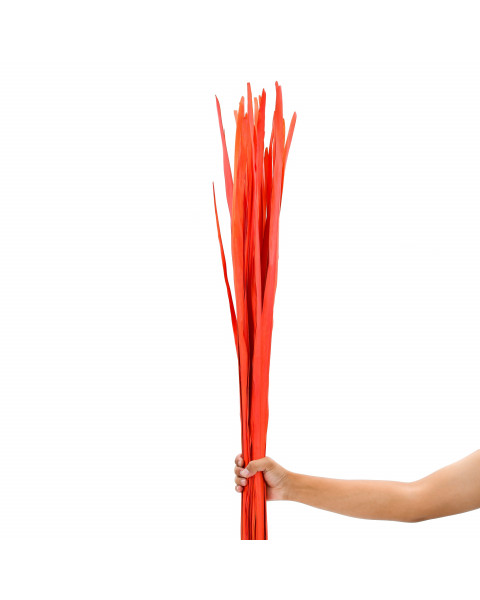 Leewadee Dried coloured palm leaf bunch for floor vases decorative grass twig bunch, 47 inches, Palm Leaf, orange