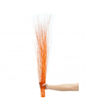 Leewadee Dried coloured palm leaf bunch for floor vases decorative grass twig bunch, 2x2x47 inches, Rattan, orange