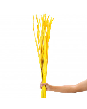 Leewadee Dried coloured palm leaf bunch for floor vases decorative grass twig bunch, 47 inches, Palm Leaf, yellow