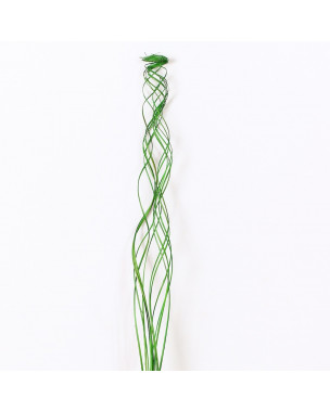 Leewadee Dried coloured palm leaf bunch for floor vases decorative grass twig bunch, 47 inches, Palm Leaf, green