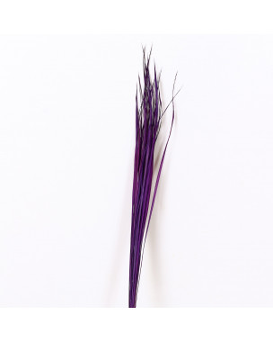 Leewadee Dried coloured palm leaf bunch for floor vases decorative grass twig bunch, 47 inches, Dried Natural-Grass, lavender